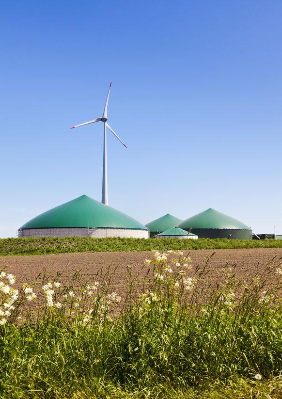 biovoimala-tuulivoima