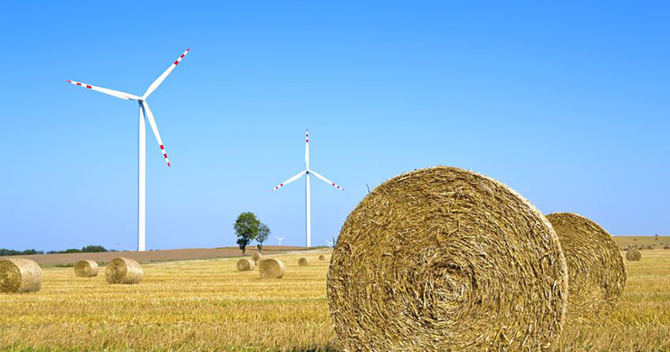 uusiutuva-bioenergia